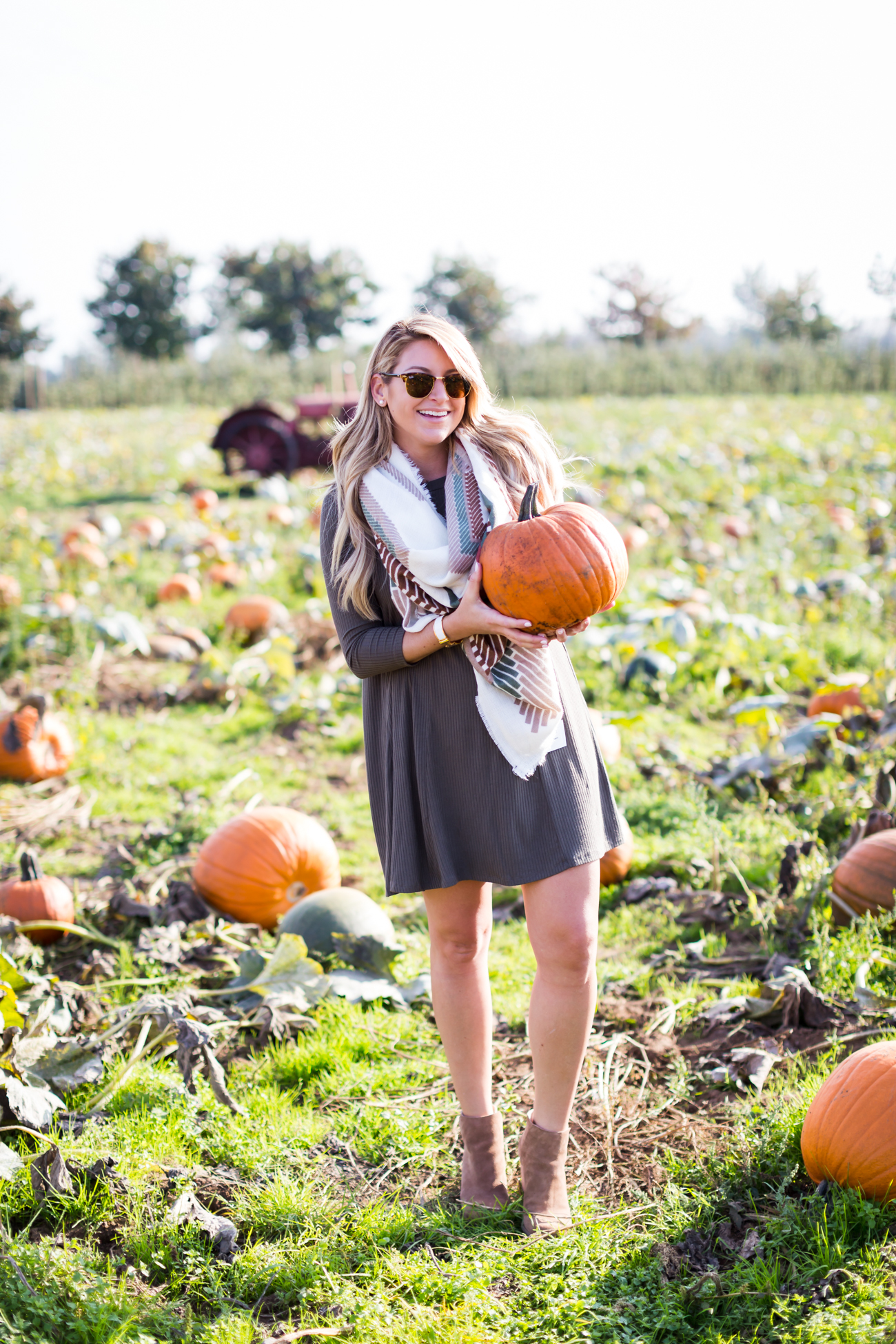 Outfit Pumpkin Patch Shop Dandy A Florida Based