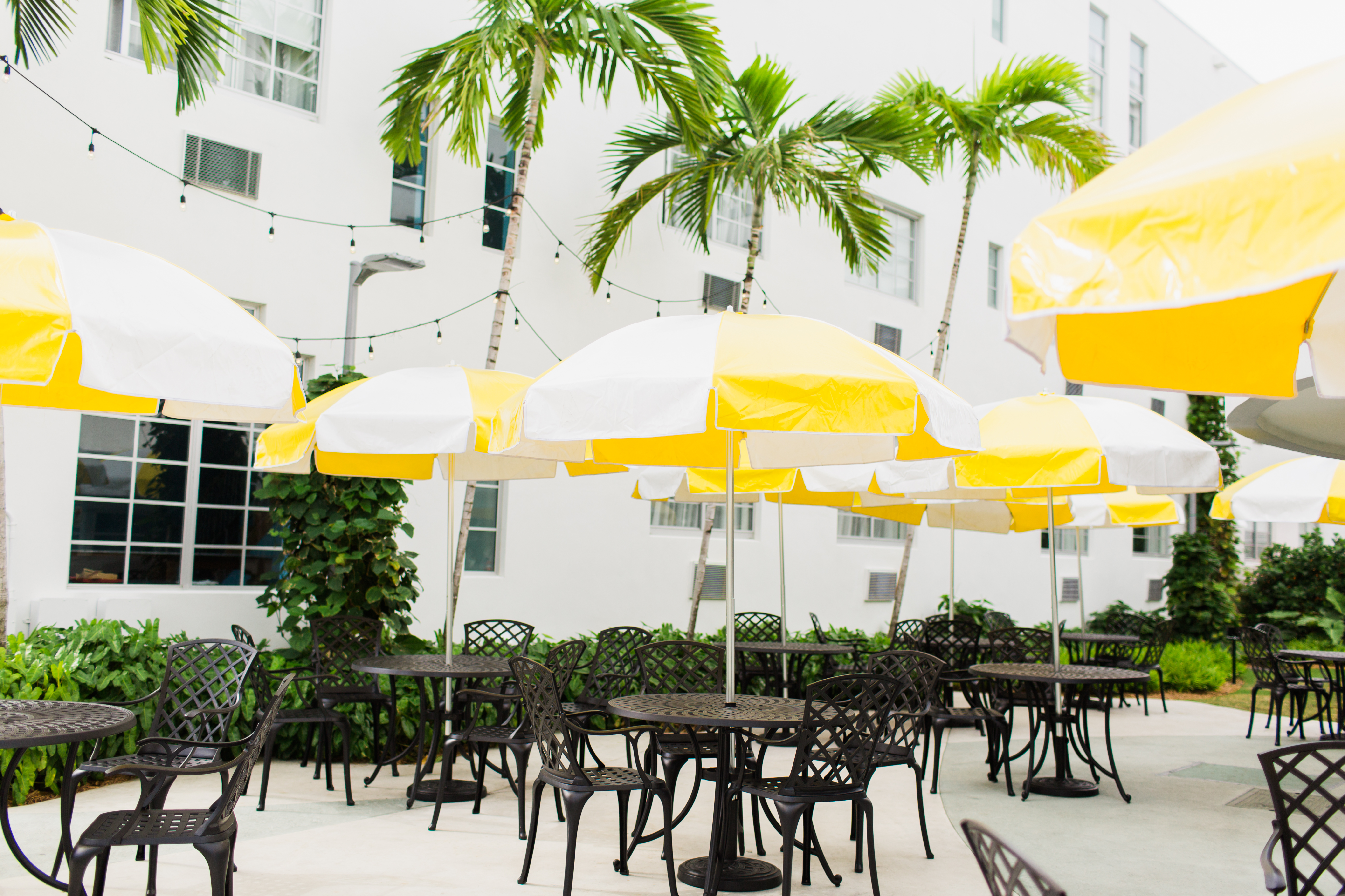 Washington park hotel in south beach miami was a blast i love this new retro style boutique hotel so much the new washington park hotel opened in the