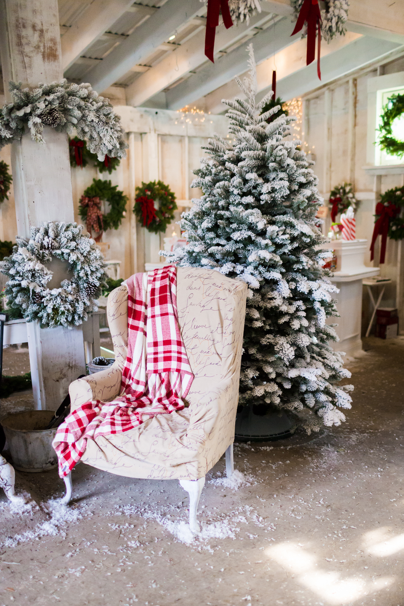 Nordstrom December Christmas Blog Photos at Muddys Grandmaws ...